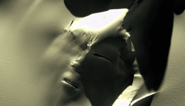 alienface.png