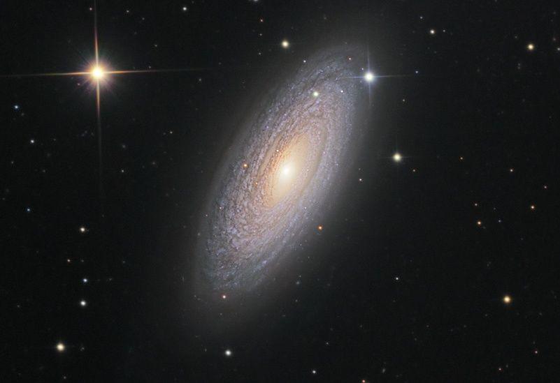 NGC2841cass50_schedler_c800.jpg