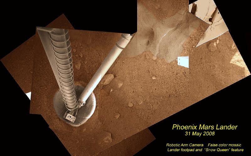 PhoenixMosaic_h_9Jun08_c800.jpg